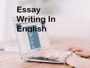 essay-writing-in-english