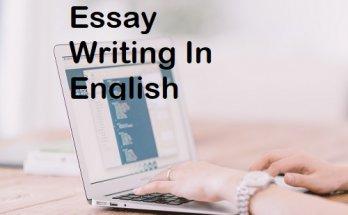 essay-writing-in-english