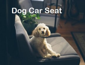dog-car-seat-online