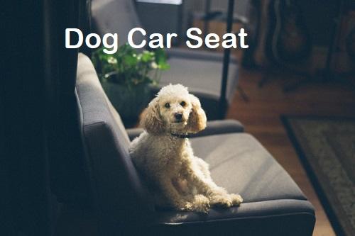 dog-car-seat-online
