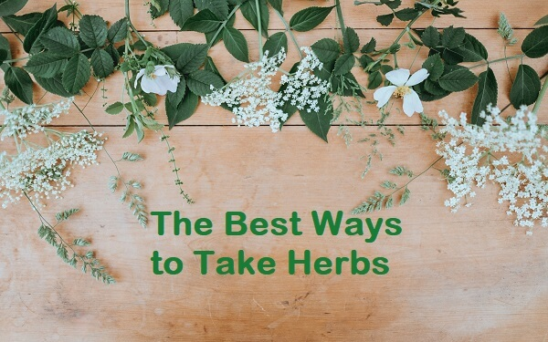 Take Herbs